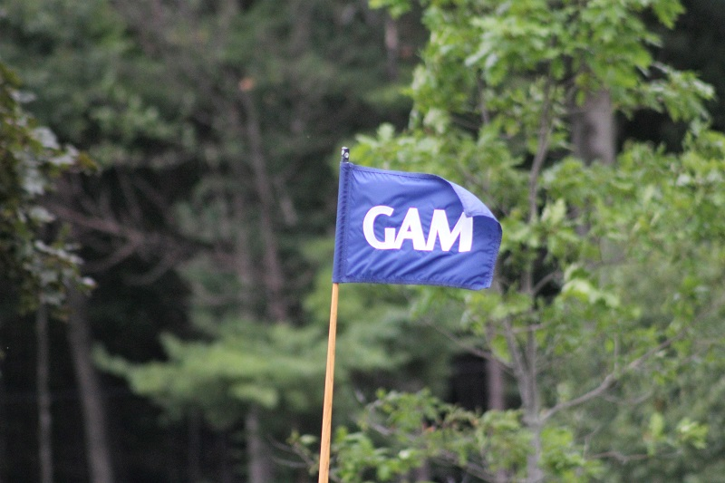 2020 Online GAM Membership and Renewal Available Now!
